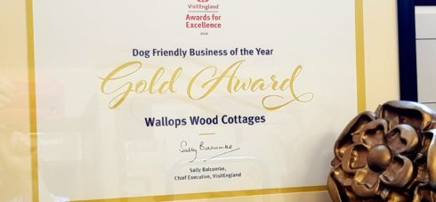 Gold Award in a frame for Dog Friendly Business of the year 2018 for Wallops Wood Cottages
