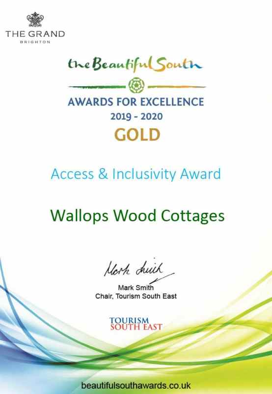 award white paper with gold award for access and inclusivity