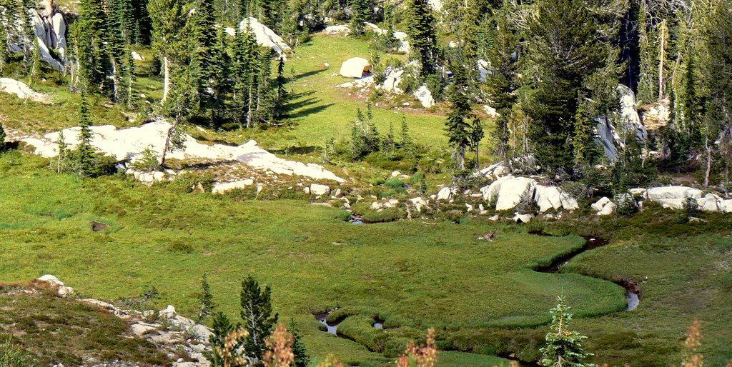 Image of meadow and creek in the Wallowas from a llama pack Trip