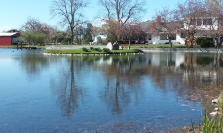 INCREDIBLE 3.78 Acres with Private Pond