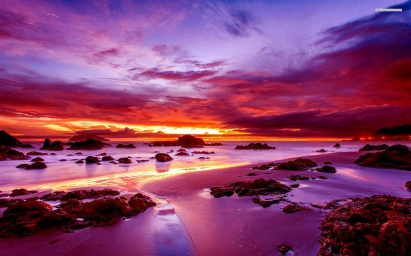 purple sunset rocky beach wallpaper