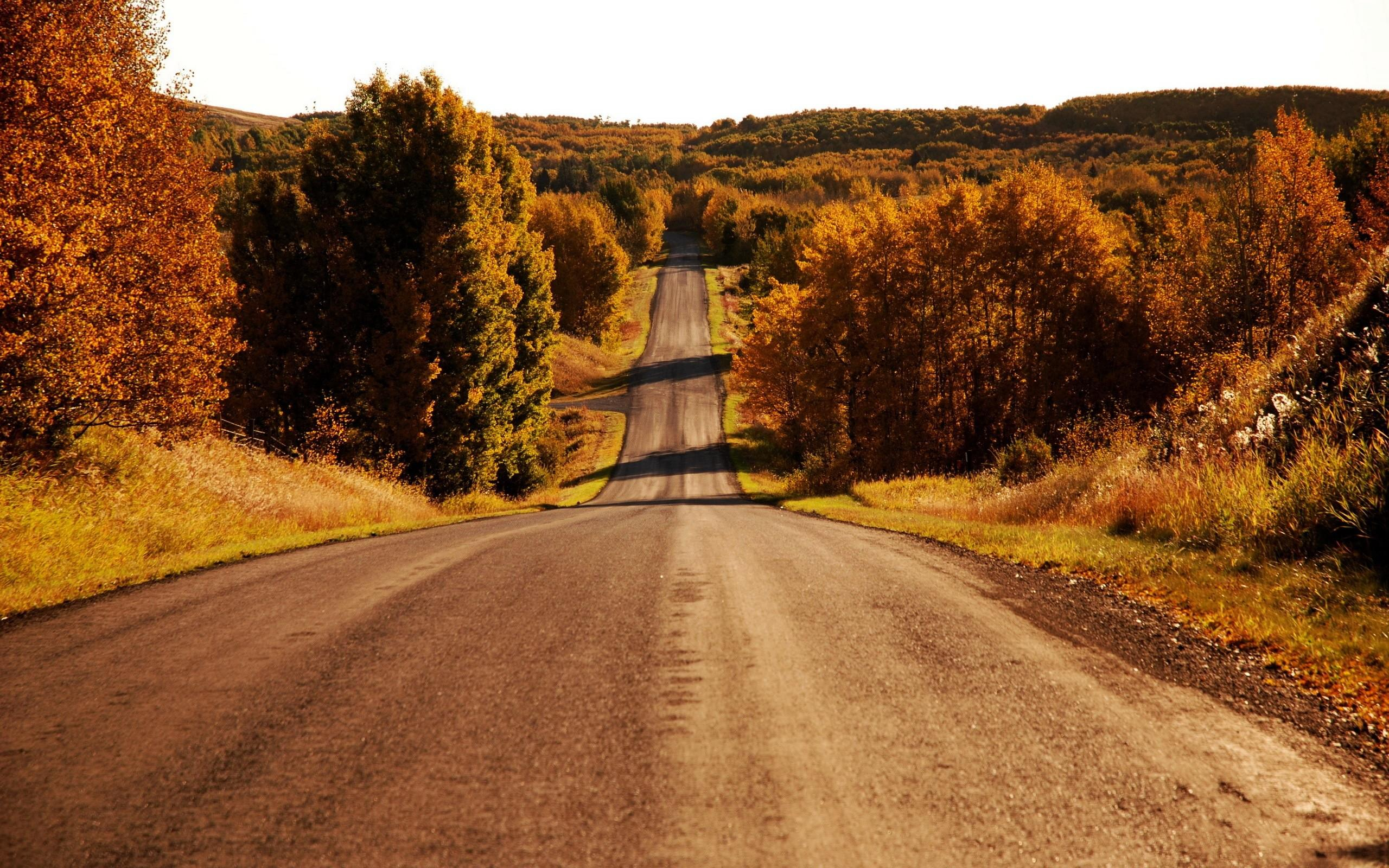 Beautiful Fall Location Wallpapers Landscapes Trees Skylines Roads High Resolution Pictures