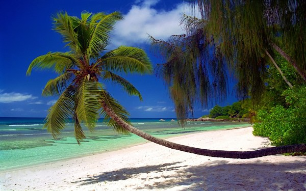 pin seychelles-islands-wallpaper-vacations-wallpapers