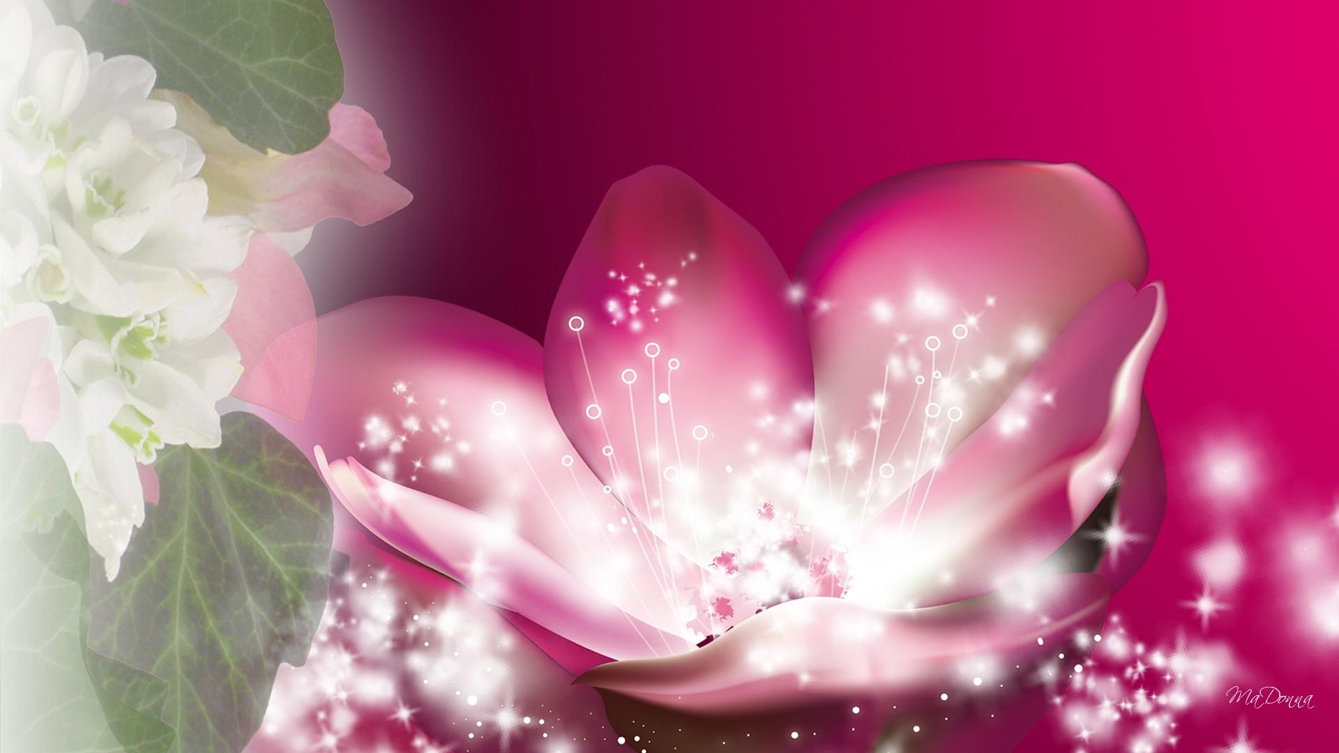 Cute Sparkly Pink Wallpapers Magical Sparkle Flower Wallpaper Nature And Landscape