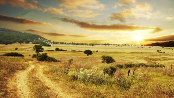 beautiful country road wallpaper