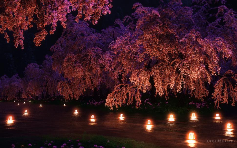 Beautiful Colorful Girls Anime Sakura Wallpaper Cherry Blossom Flowers Pink Night Lights Cg Hd Wallpaper