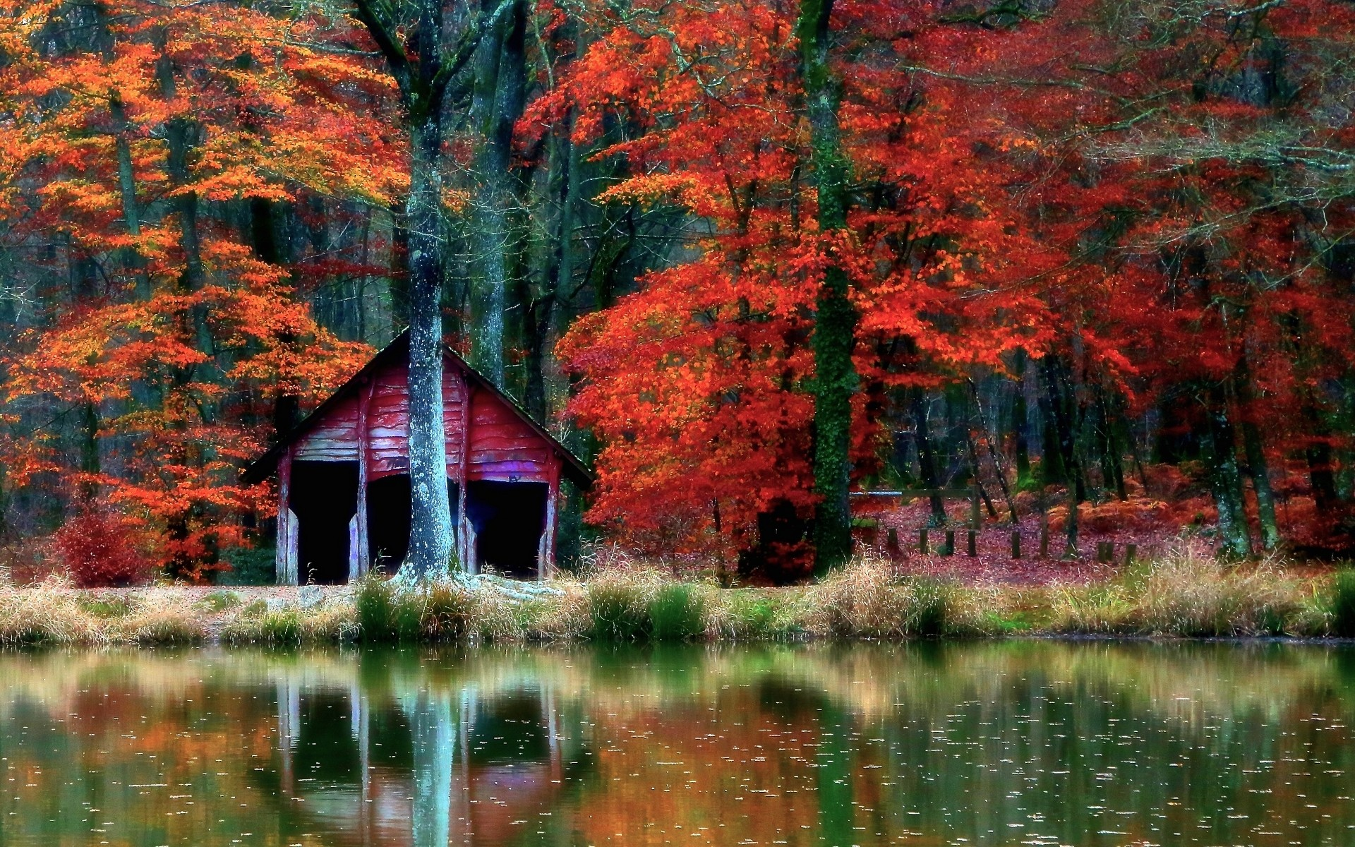 Beautiful Fall Location Wallpapers Nature Landscape Hut Forest Lake Fall Shrubs Leaves