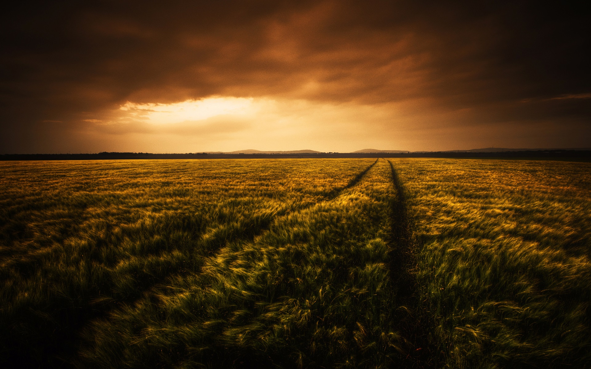 Pubg 4k Wallpapers Download For Pc Beautiful Wheat Fields At Evening Clouds Wallpaper