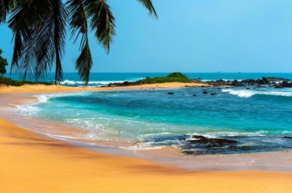 beach landscape tropical sea