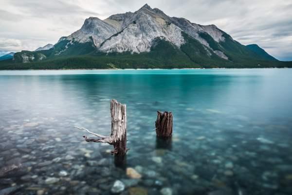 Bubbles Abraham Lake Alberta Canada