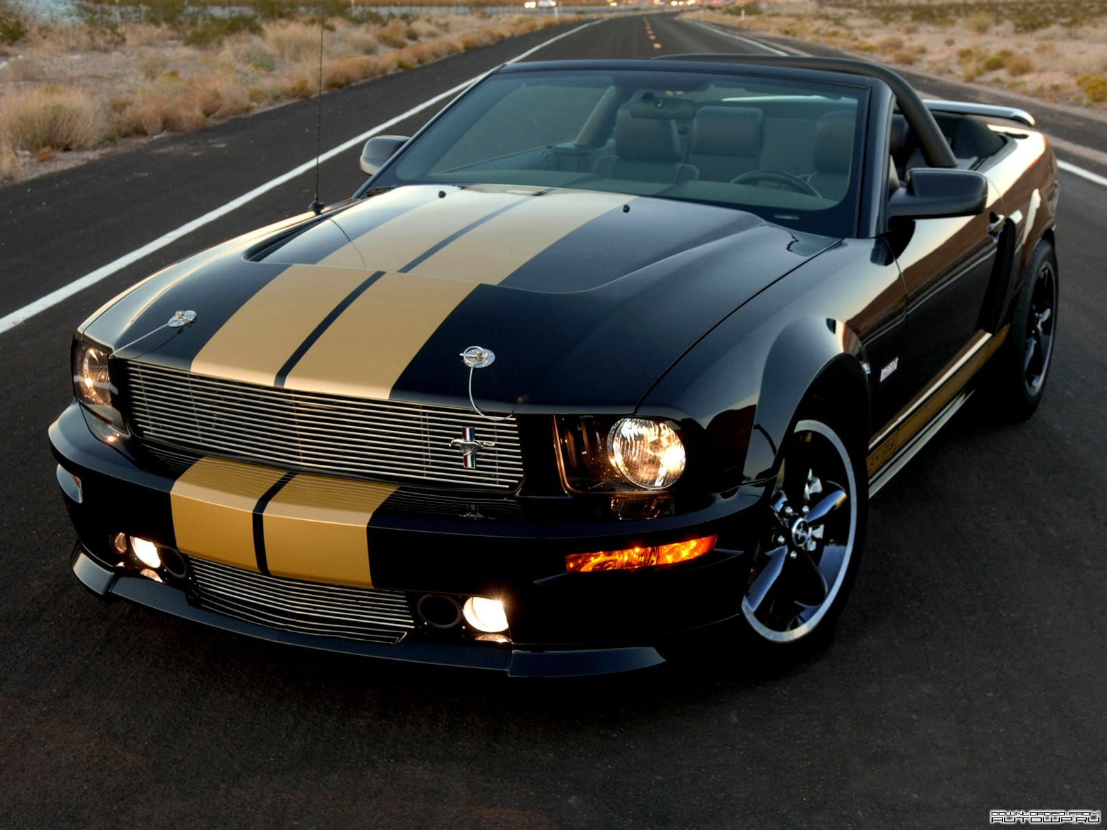 Black And Brown Ford Mustang Convertible Coupe Car Shelby Gt500