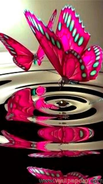 Beautiful Cute Baby Girl Wallpaper Download Pink Butterfly Abstract Wallpapers For Your
