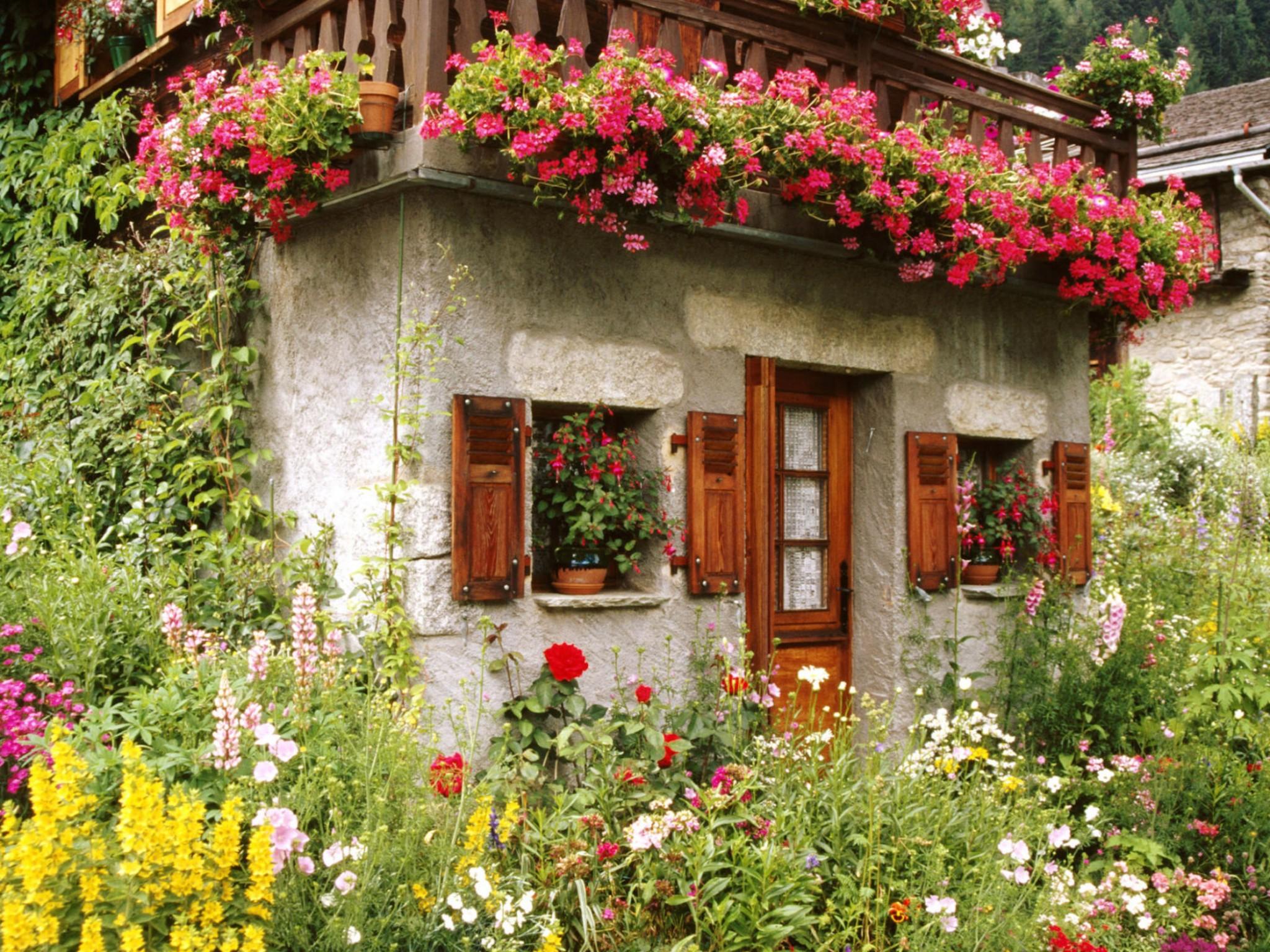 Lovely English Cottage Garden Wallpaper  Free Downloads