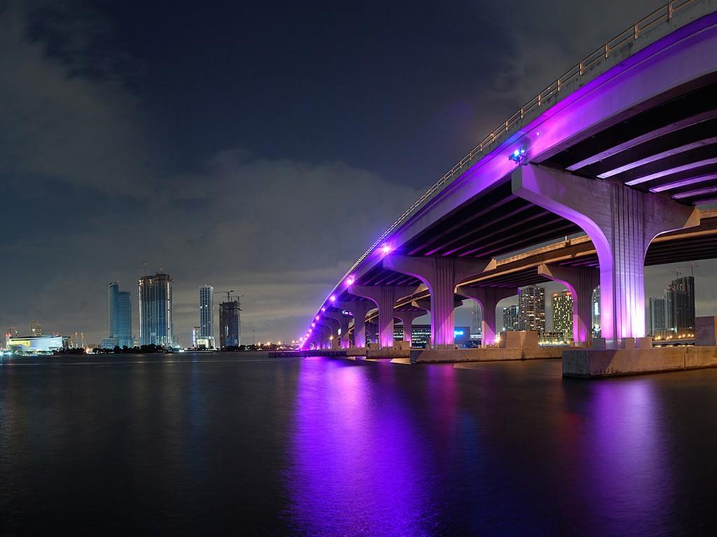 Cute 3d Flower Wallpaper Nighttime Miami Fl Skyline Wallpaper Free Downloads