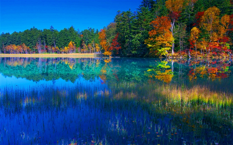 Fall Anime Wallpaper Vocaloid Amazing Autumn Colors Of Autumn Lake Nature Lakes Hd