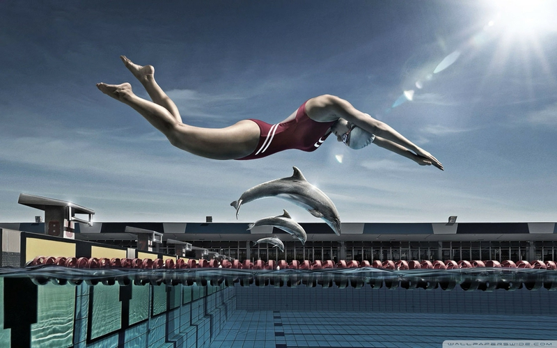 Death Race Cars Hd Wallpapers Swimming Race Dolphins Diving Block 1920x1200 Wallpaper