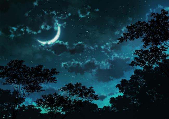 Blue Whale Wallpaper Hd Wallpaper Anime Landscape Moon Clouds Stars Night
