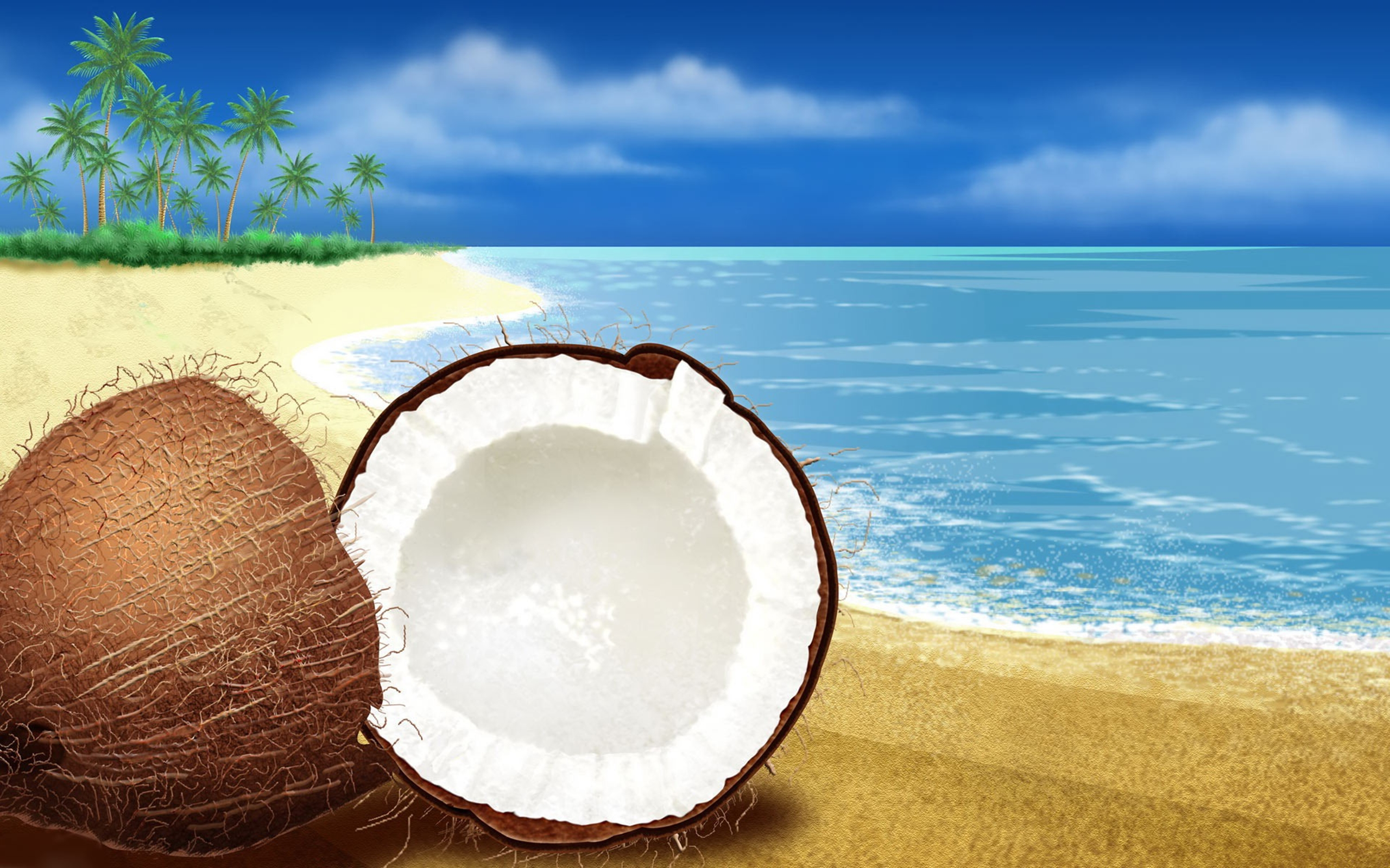 Hd Wallpapers For Windows 7 Desktop Background Coconut On The Beach Artistic Wallpaper 2560x1600