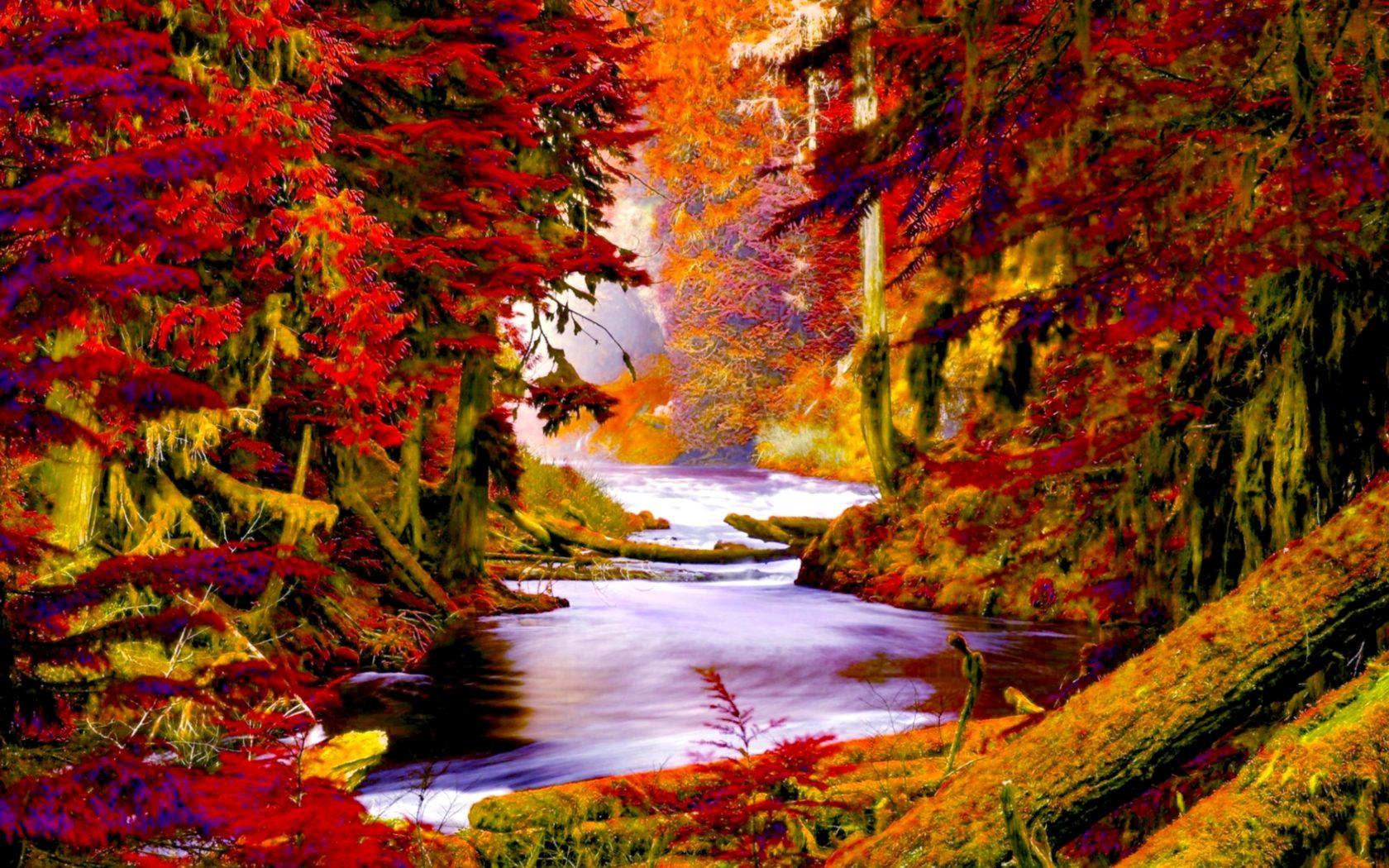 Fall Flowers Desk Background Wallpaper Autumn Forest Creek Wide Wallpaper 503570 Wallpapers13 Com