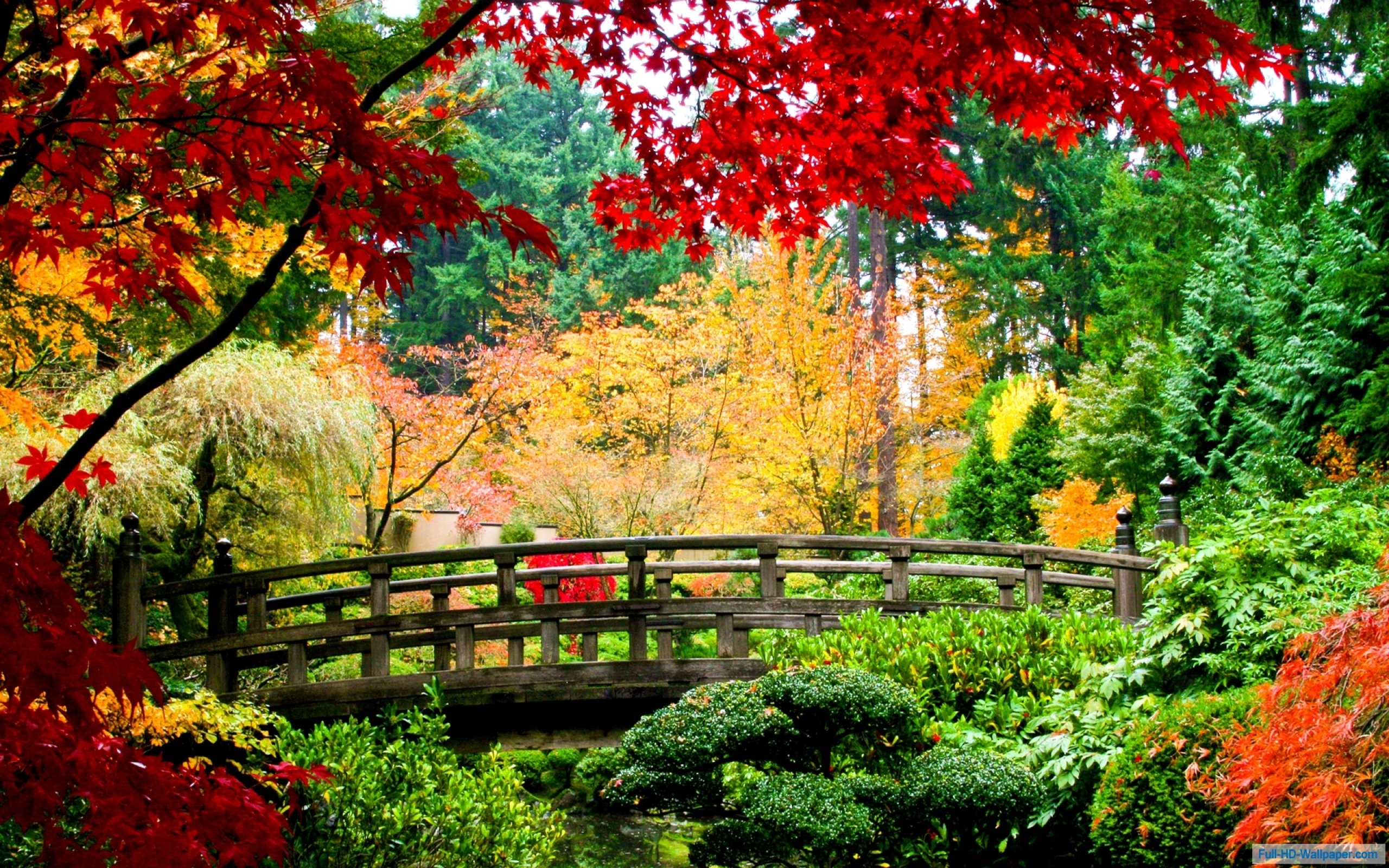 Stunning Fall Wallpapers Autumn Nature Bridge Wood Trees Leaves Red Green Yellow