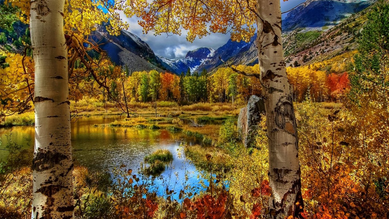 Nature Wallpaper Autumn Fall 1600x1200 Beautiful Nature Fall Hd Wallpapers Wallpapers13 Com