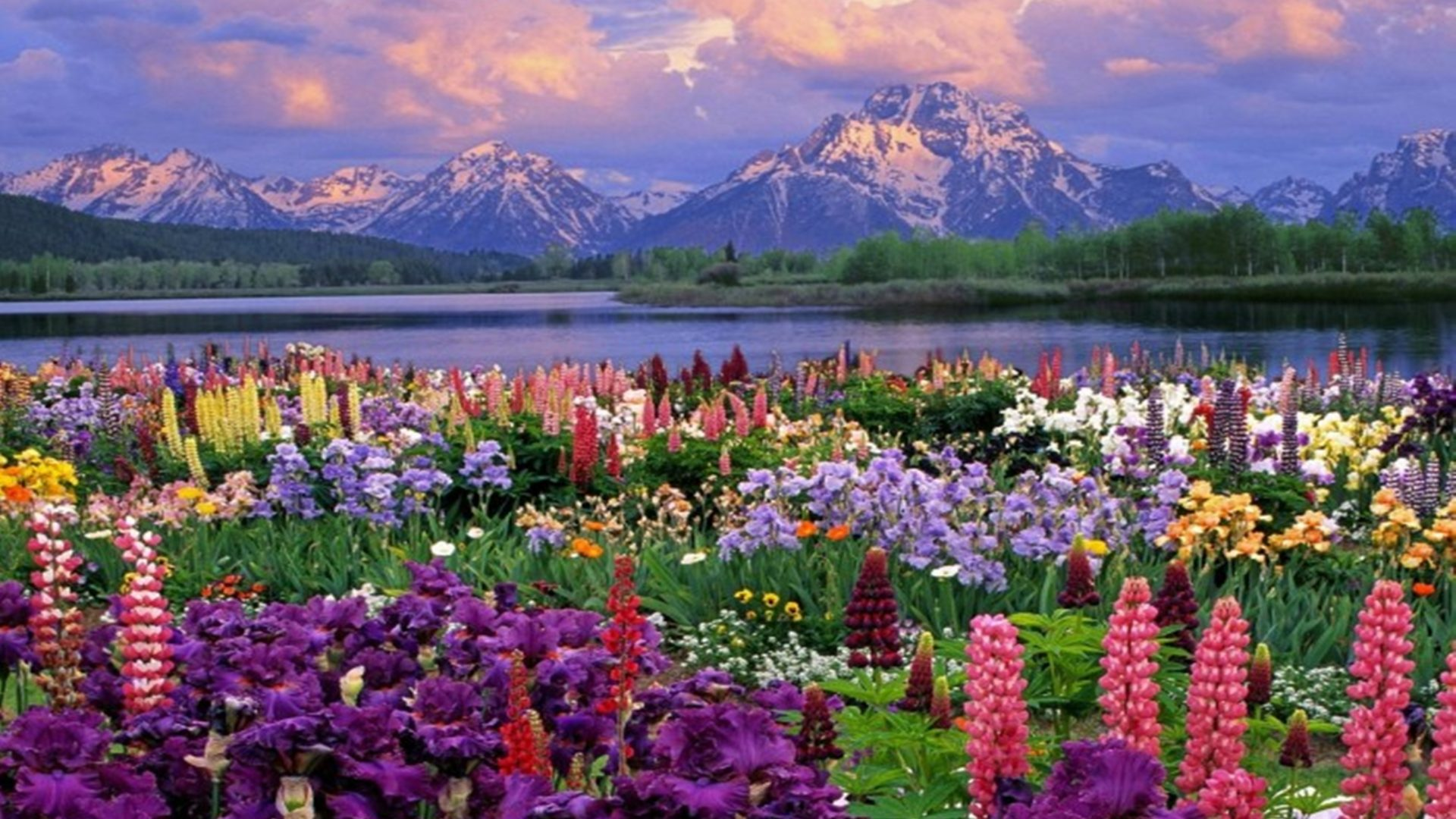 Free Android Fall Wallpaper Mountains Landscapes Flowers Garden Scenic Lakes