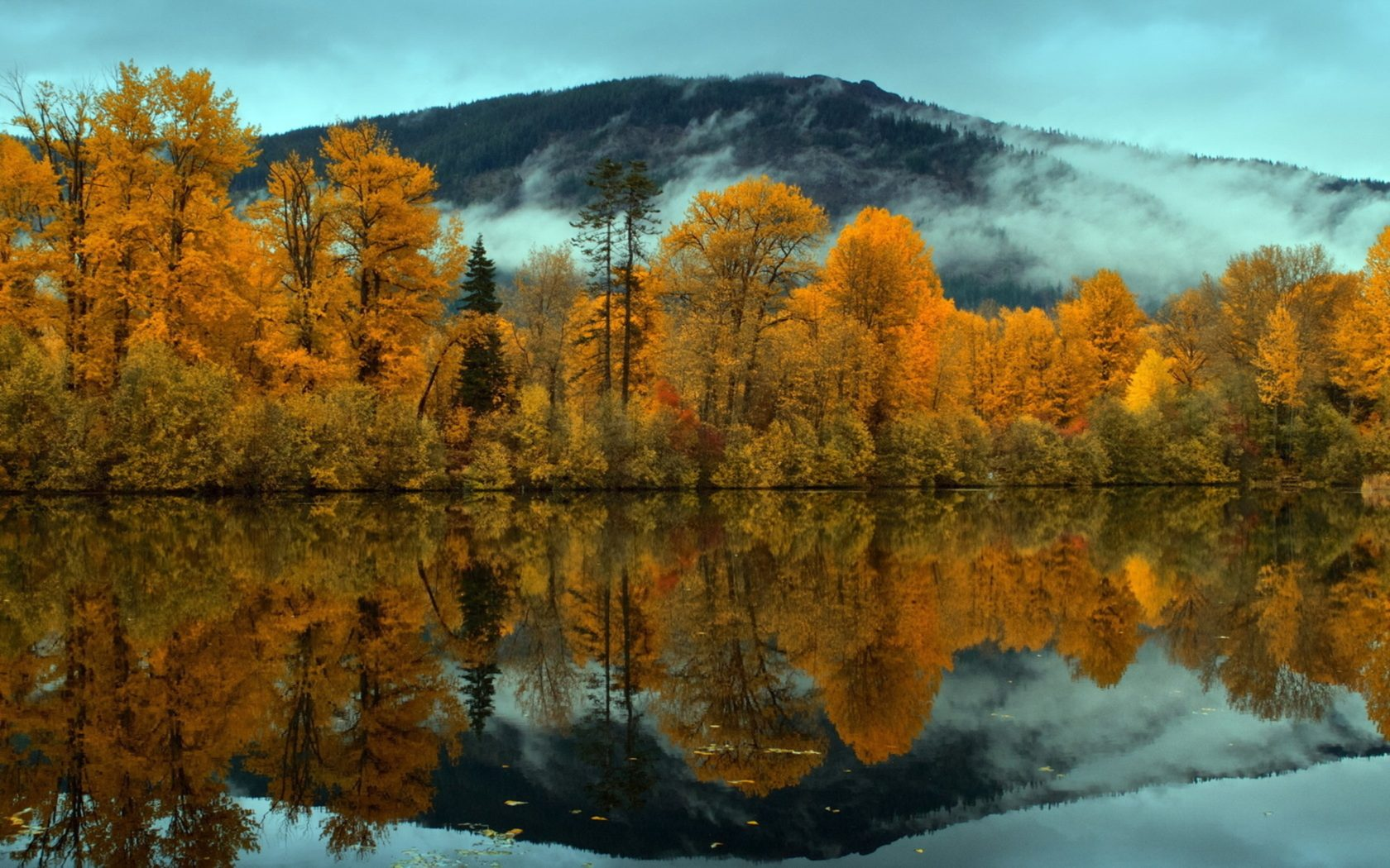 Fall Mountains Hd Wallpaper 13 Nature Landscapes Trees Forest Mountains Clouds Fog Mist