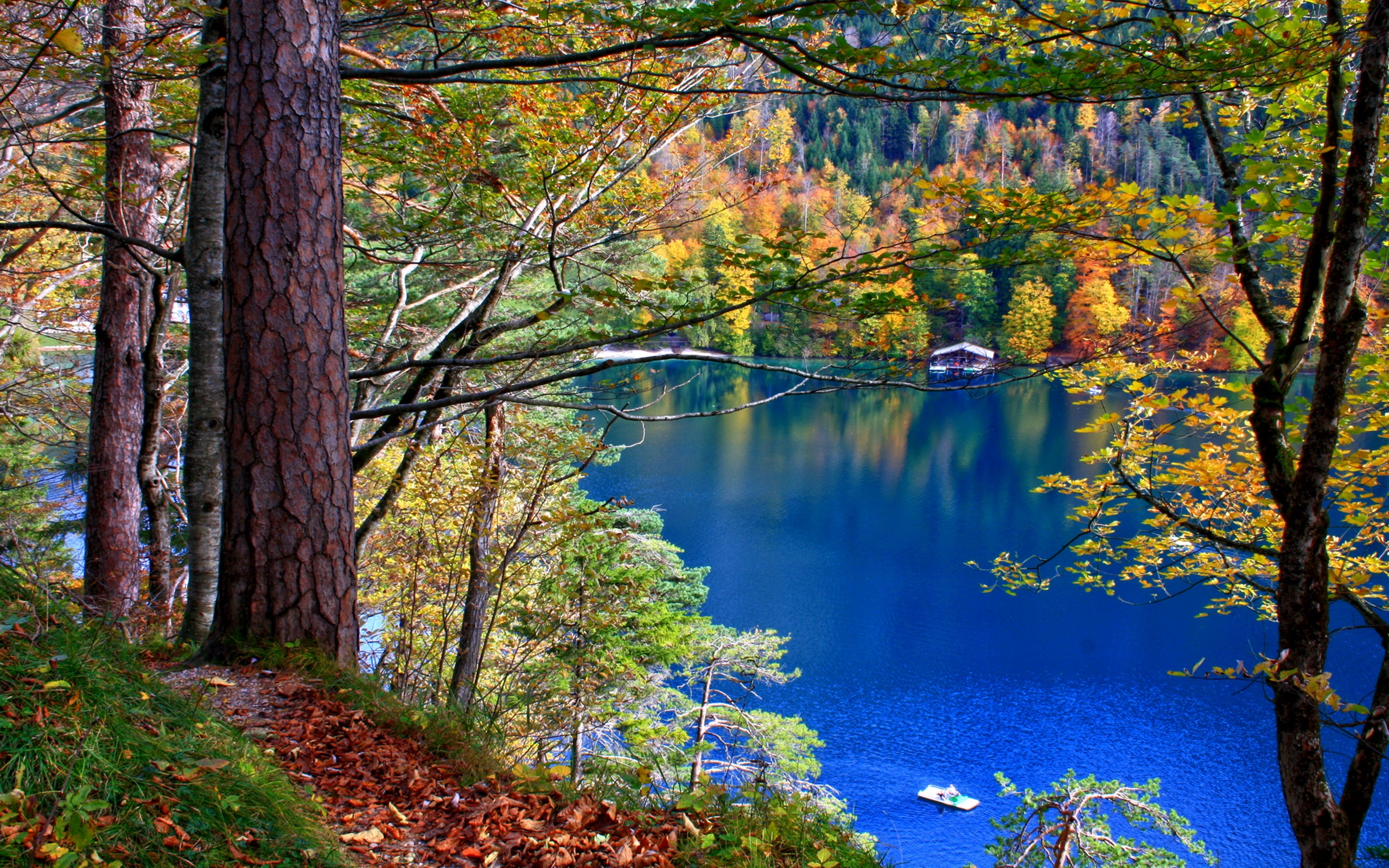 Fall Foliage Wallpaper 1920x1080 Nature Lakes Trees Forest Leaves Water Reflection Autumn