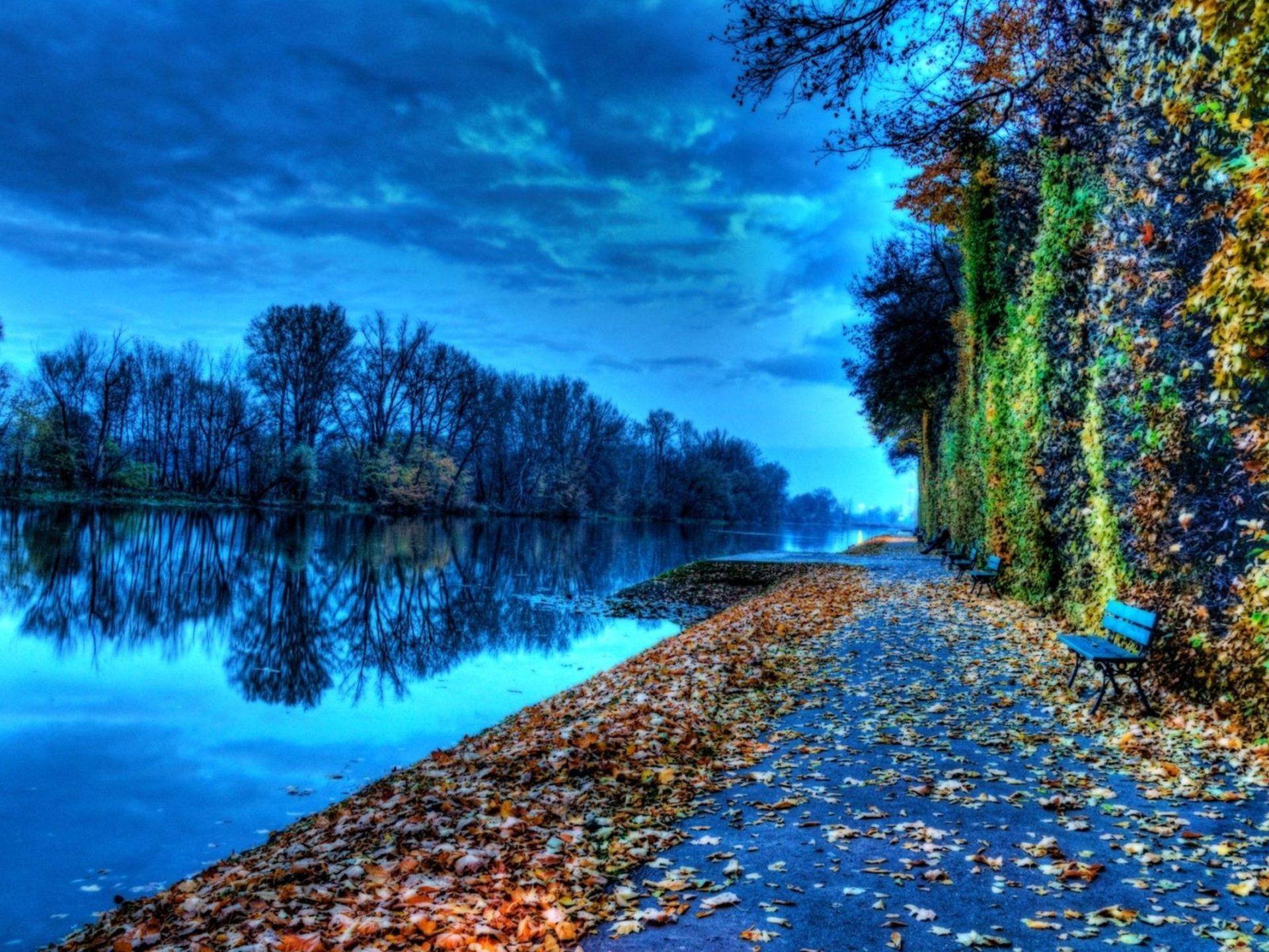 Fall Foliage Wallpaper Screensavers Riverside Bench During Autumn Nature Hd Wallpaper