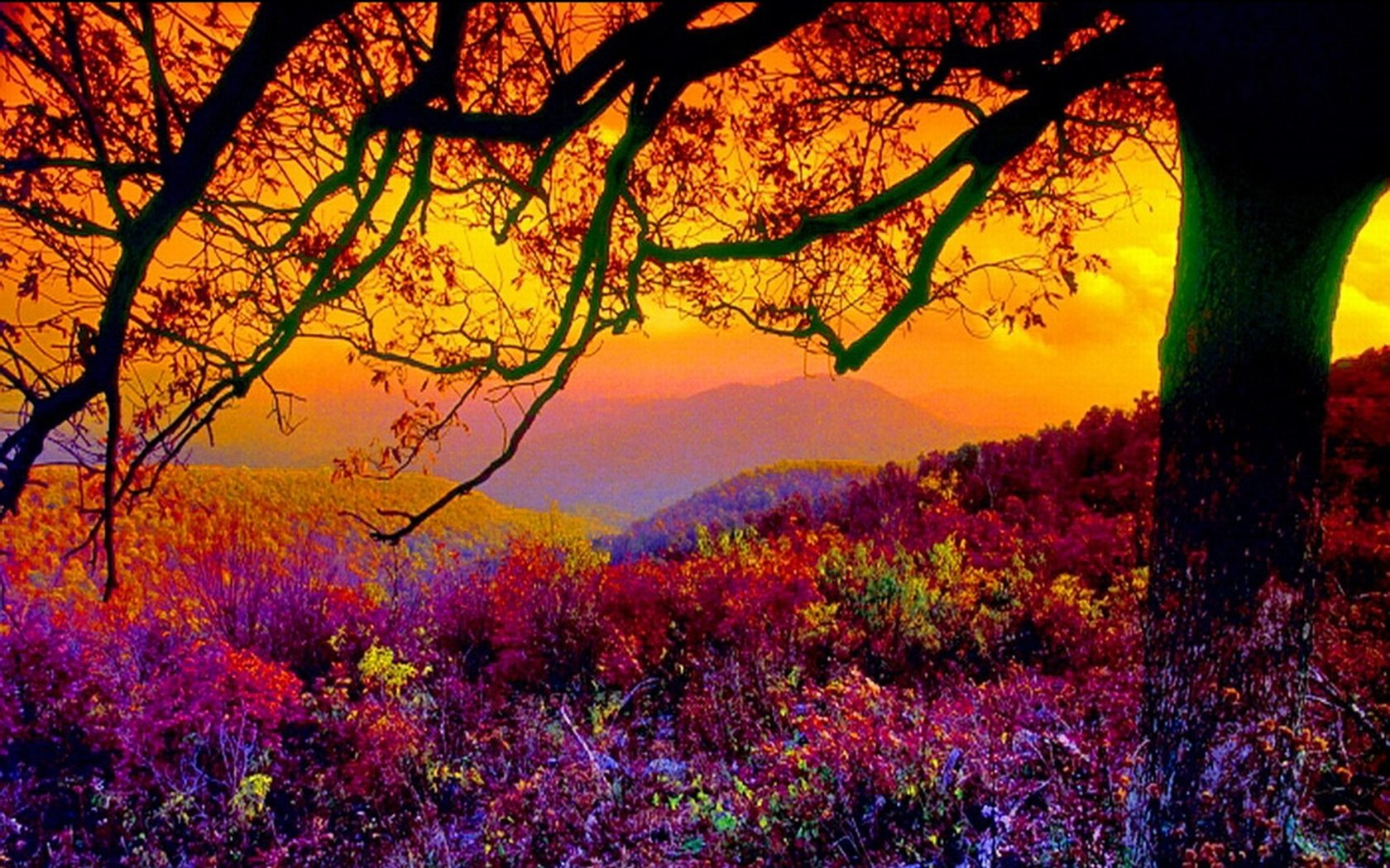 Scenic Hd Wallpapers Backgrounds Page