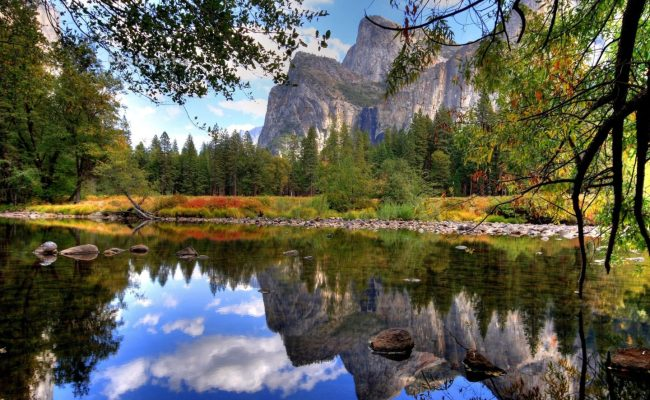 Wallpaper Lake Branches Stones Water Mountains Trees