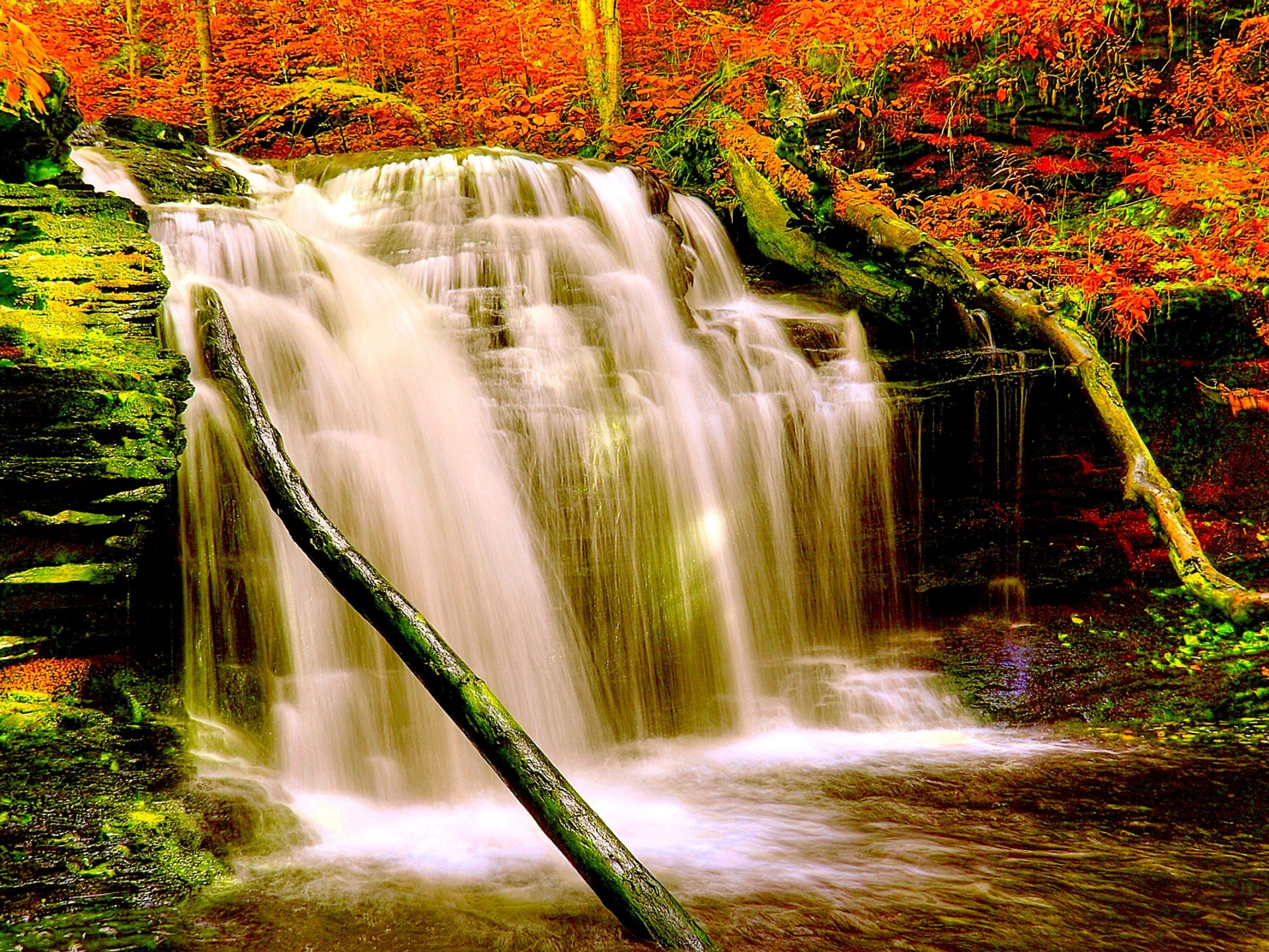 Free Live Wallpapers For Iphone X Autumn Forest Waterfall Nature Aiyumn Hd Background