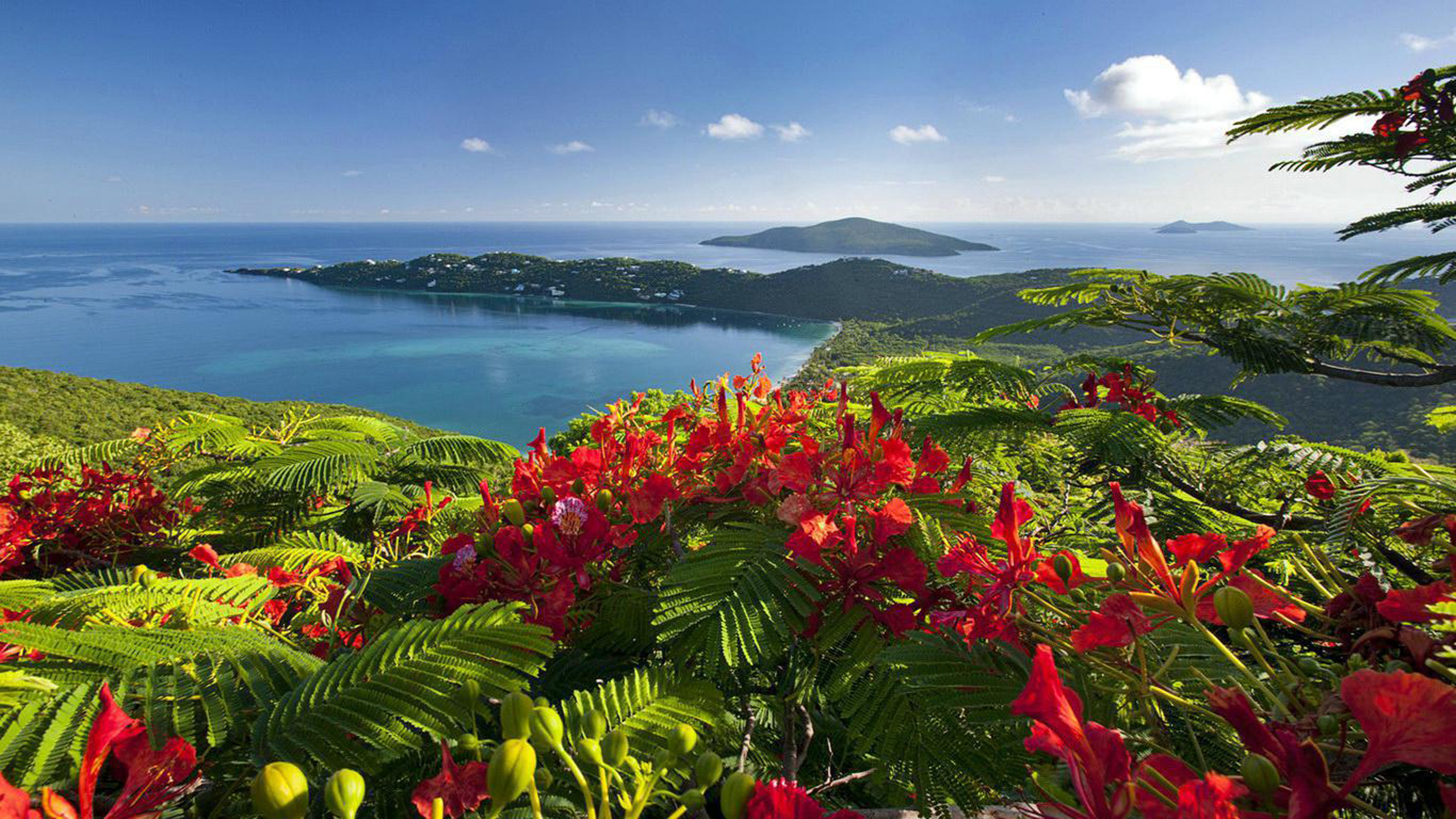 Luxury Iphone Wallpaper Caribbean Islands Beautiful View Exotic Holiday Wallpaper