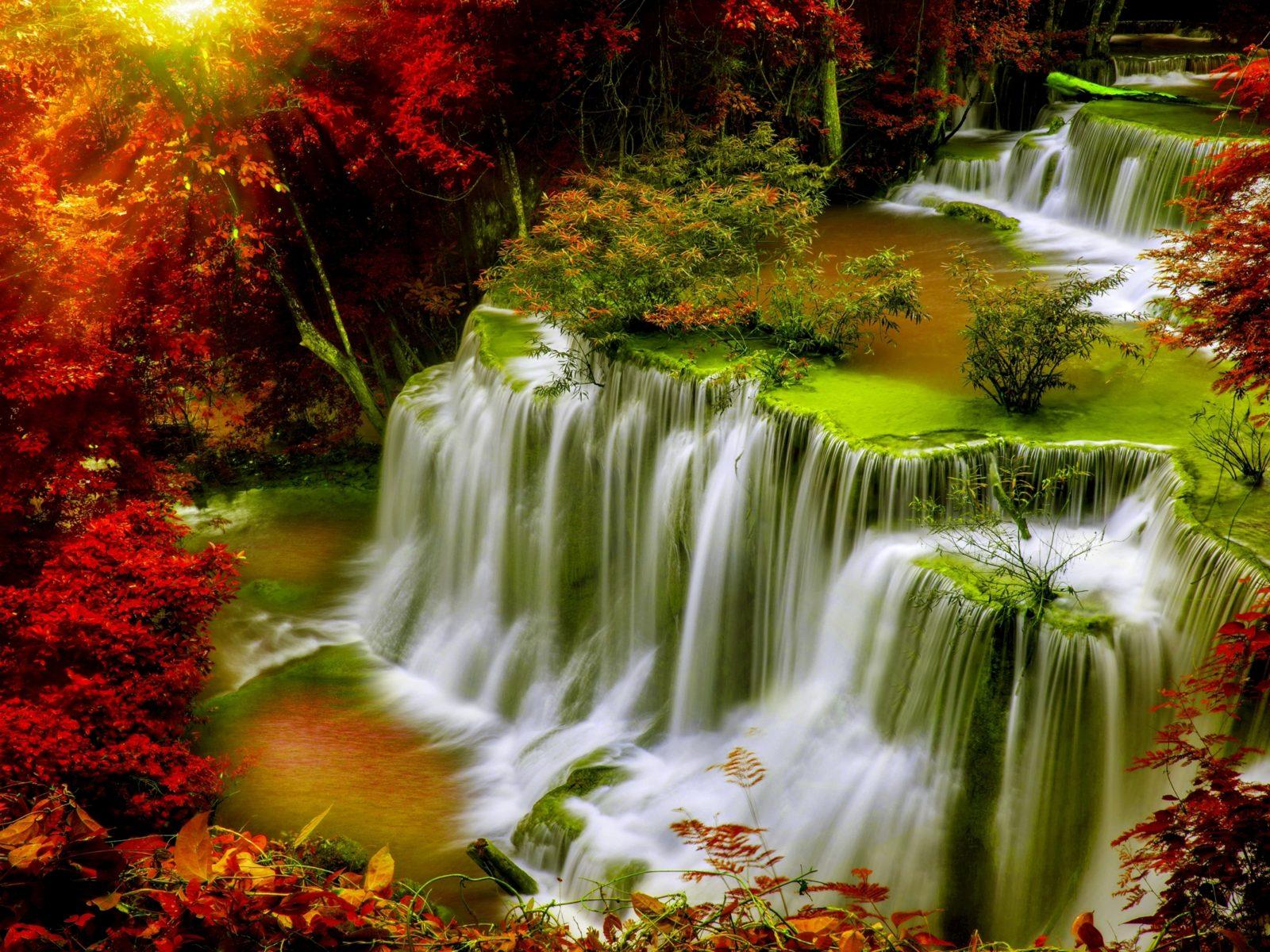 Cascade FallsAutumnforestred leavessunlightDesktop HD