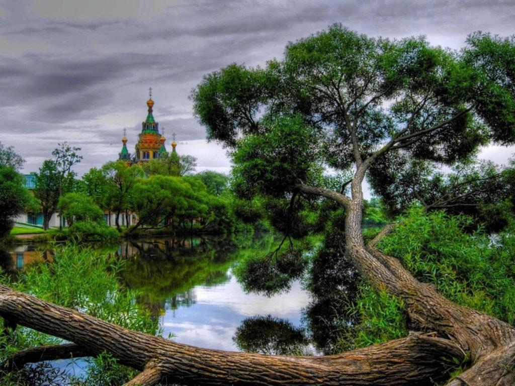 Donald Duck Iphone Wallpaper Church Peaceful River Fallen Tree Willow Wallpaper Hd