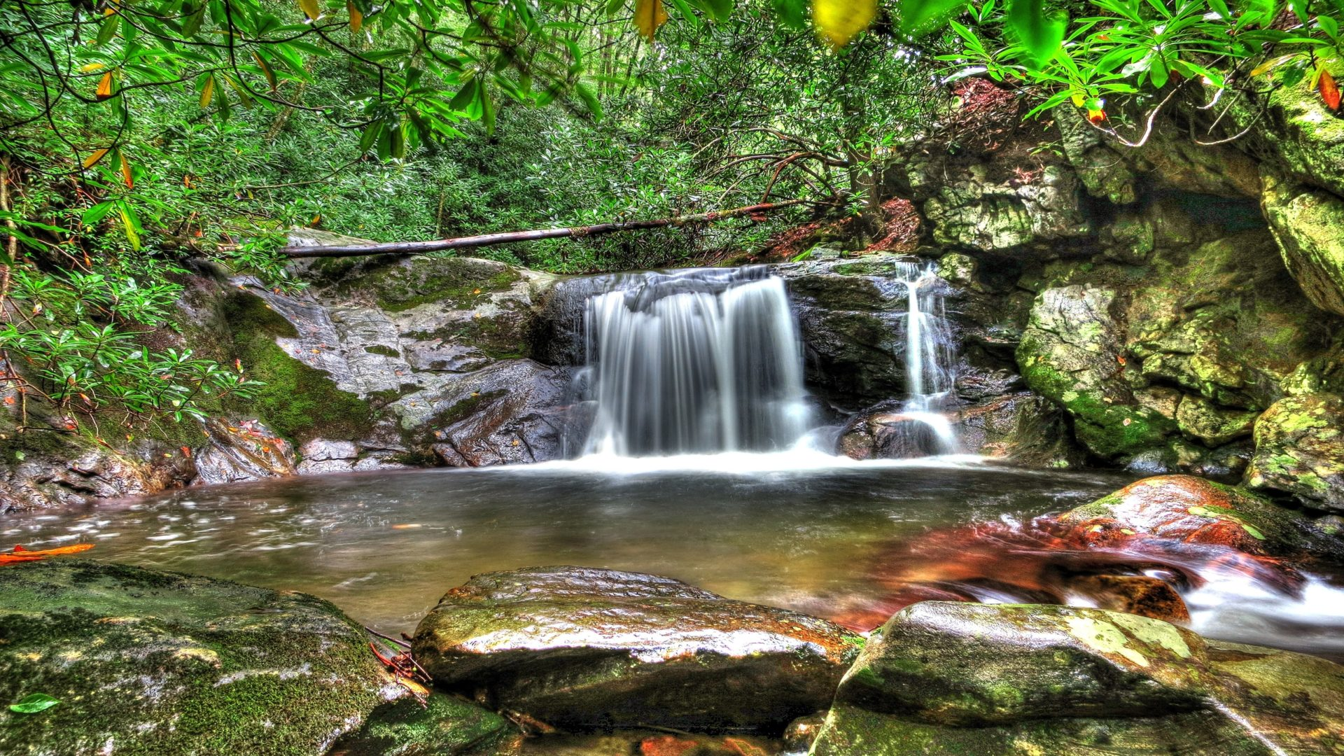 Forest Waterfall Desktop Background Hd Wallpapers 06739