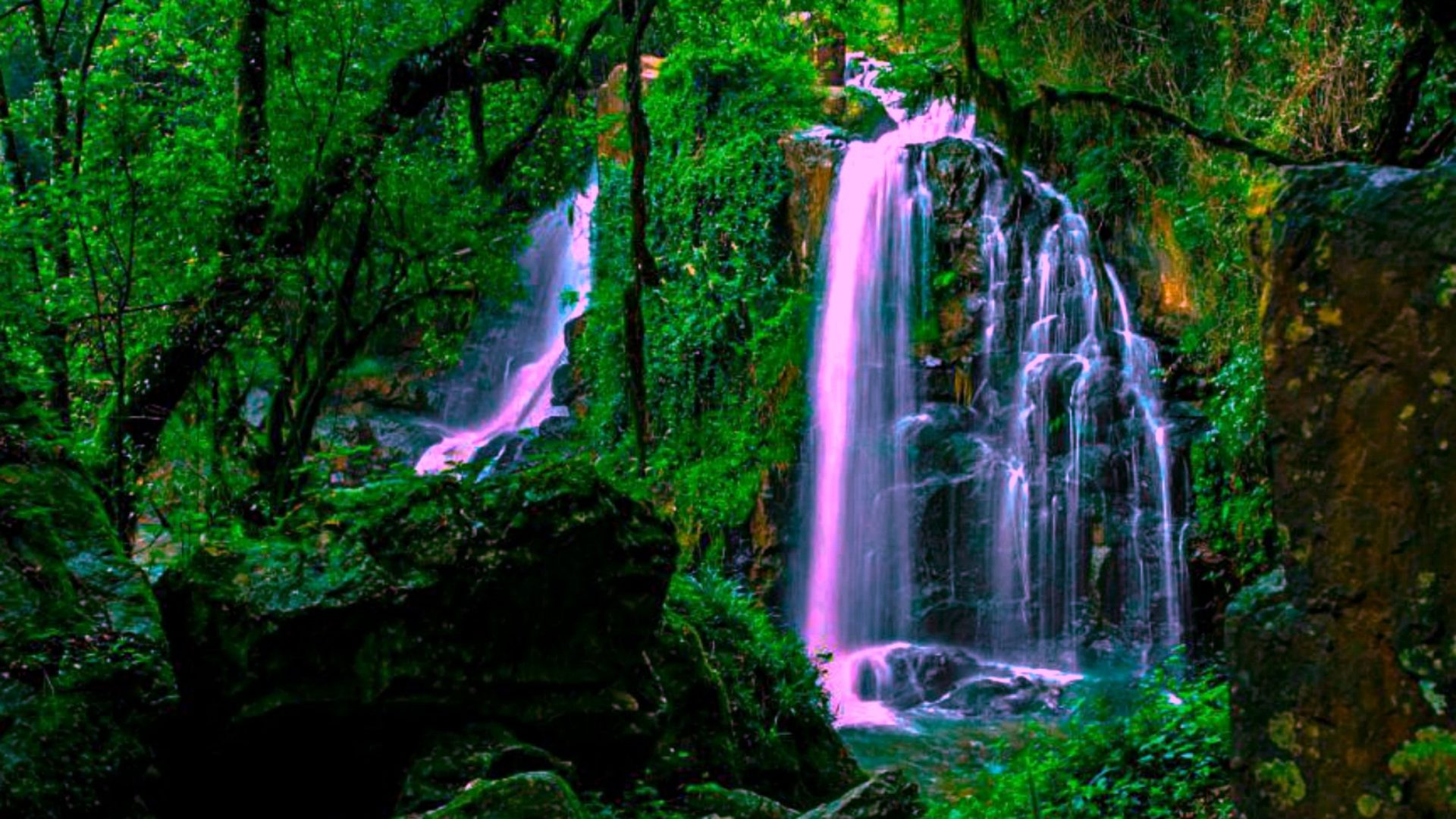 Animated Waterfalls Wallpapers Free Download Magical Forest Waterfall Wide Wallpaper 552228