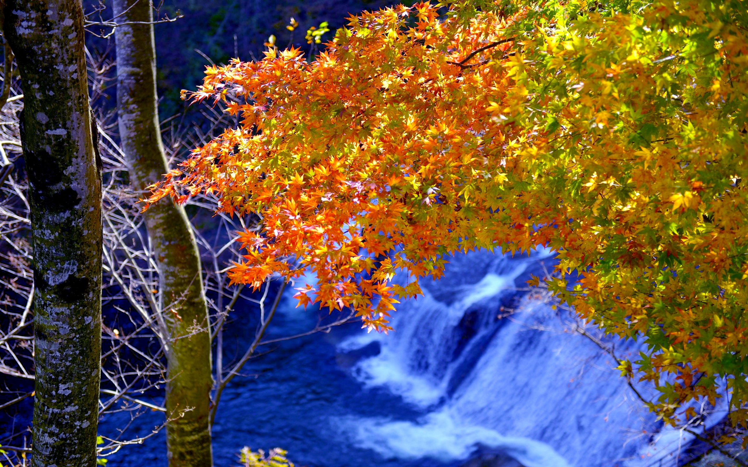 Fall Computer Screen Wallpaper Natural Forest Waterfall Falls In Autumn Hd Quality