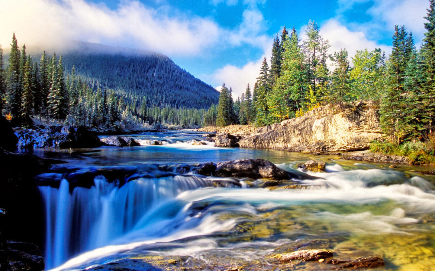 Fall Wallpaper For Desktop Background Nature Mountain Dense Spruce Forest River Rock Waterfall