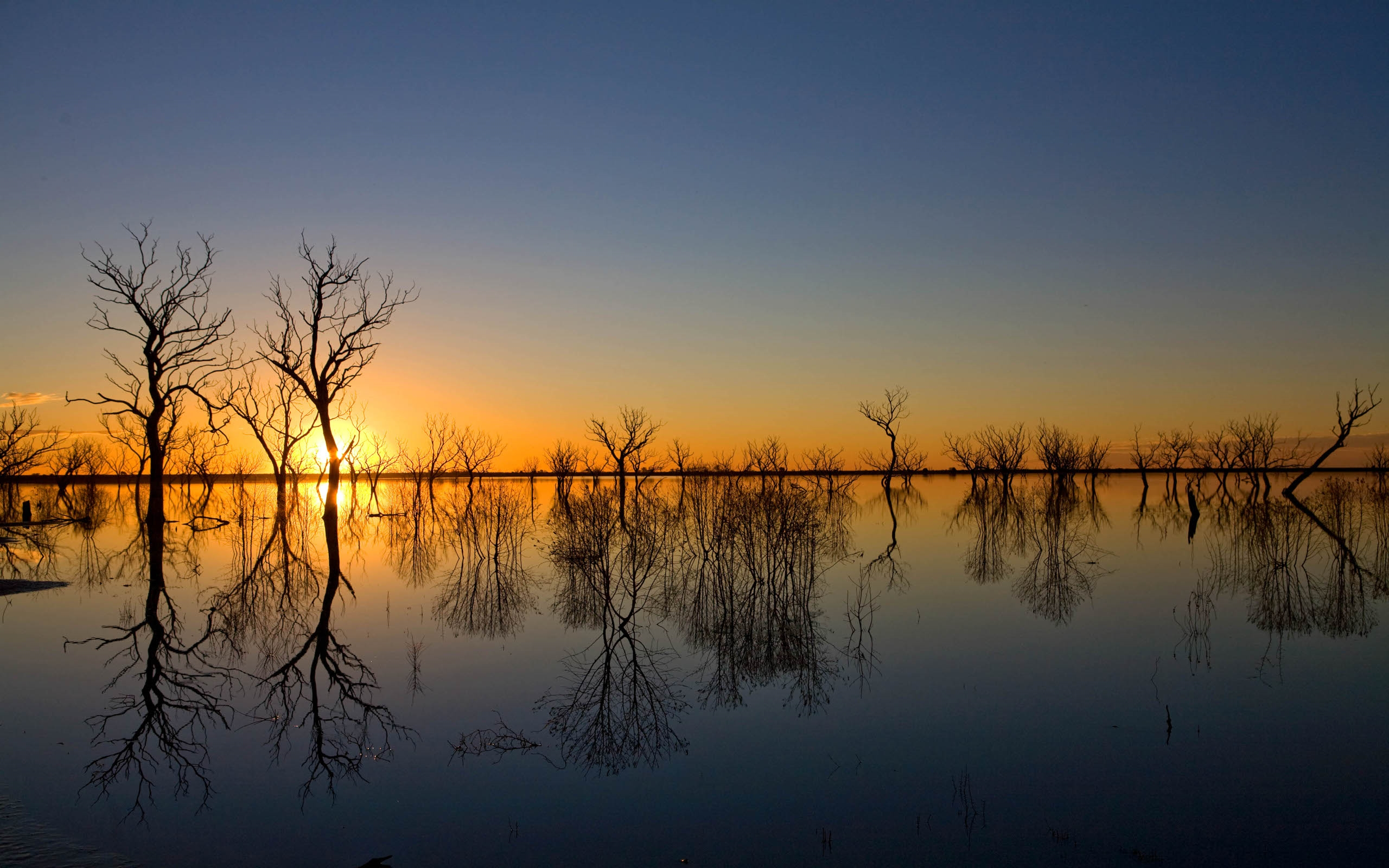 Inspriational Quotes Wallpaper For Mac Sunset Horizon Trees In Water 90870 Wallpapers13 Com