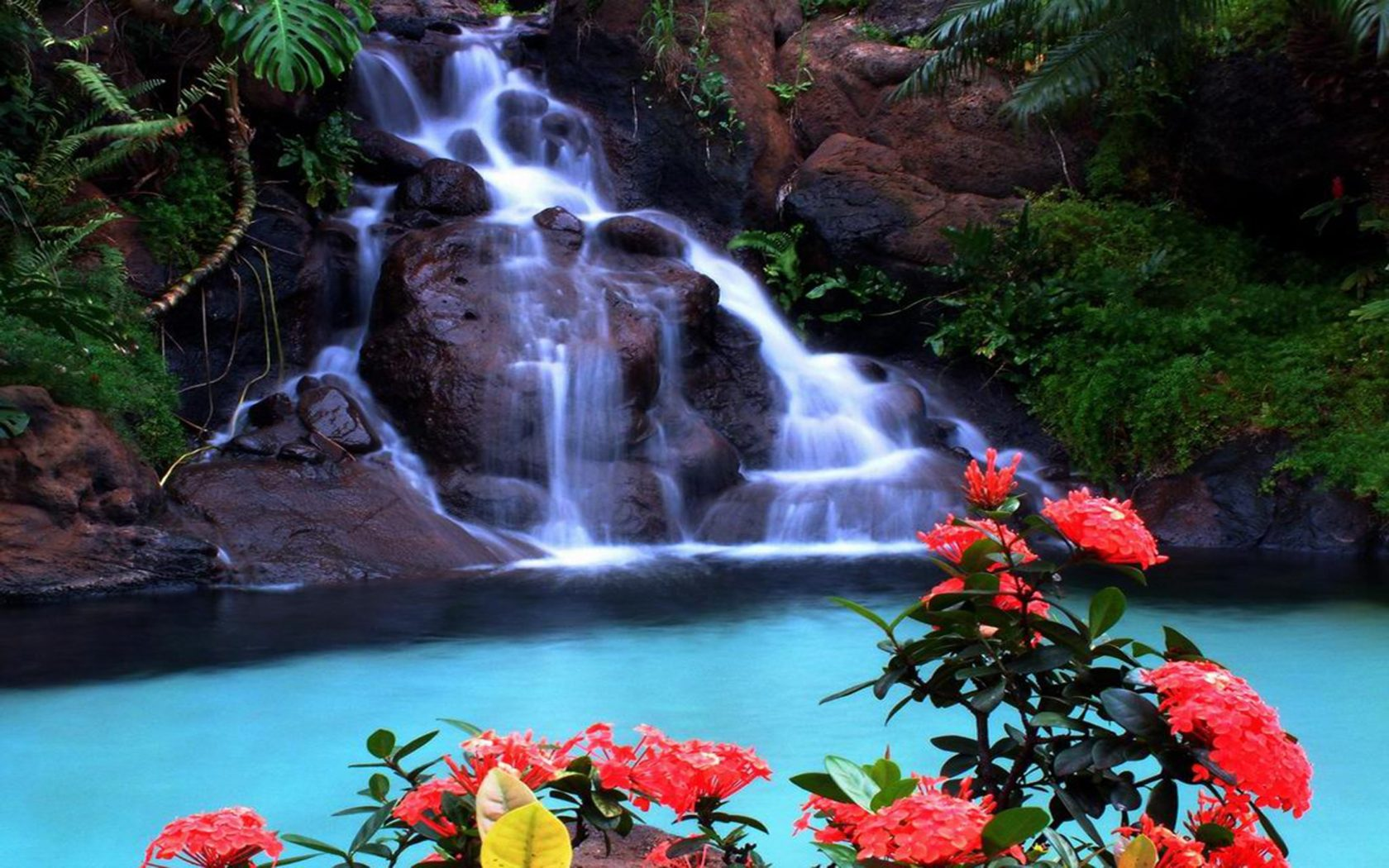 Fall Wallpaper For Android Tablet Tropical Waterfall Wallpaper Wallpapers13 Com
