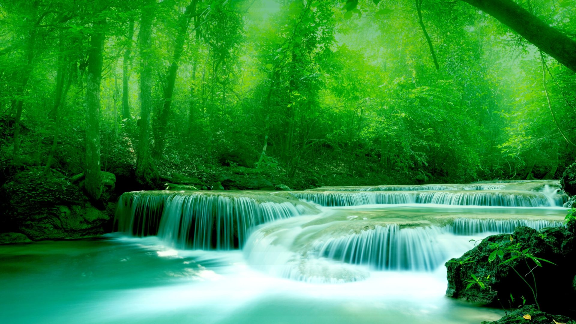Free 3d Widescreen Wallpapers For Pc Wallpaper River Water Rocks Trees Greenery Free