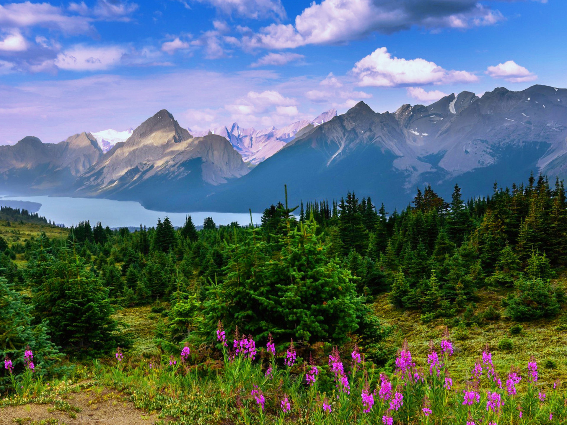 Beautiful Landscape Background Mountain Forest Trees Lake