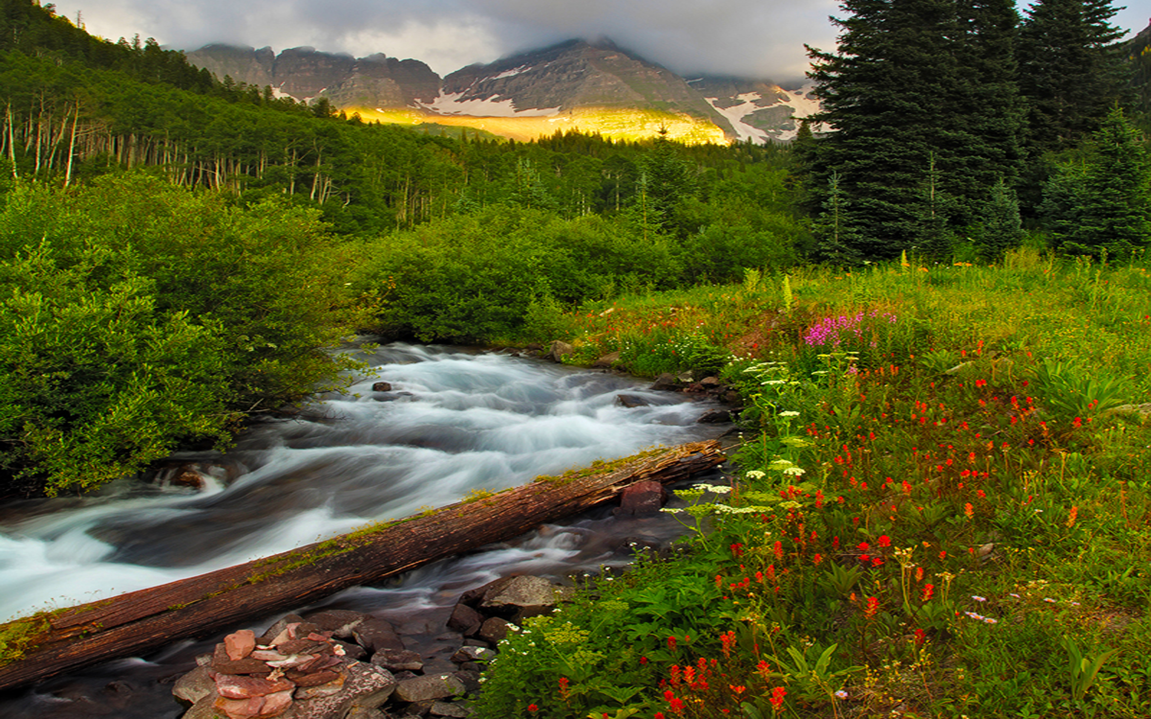 Fall Leaves Live Wallpaper Iphone Beautiful Scenery And Mountainous River Flowers Green
