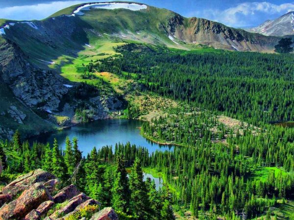 mountain landscape lake pine forest