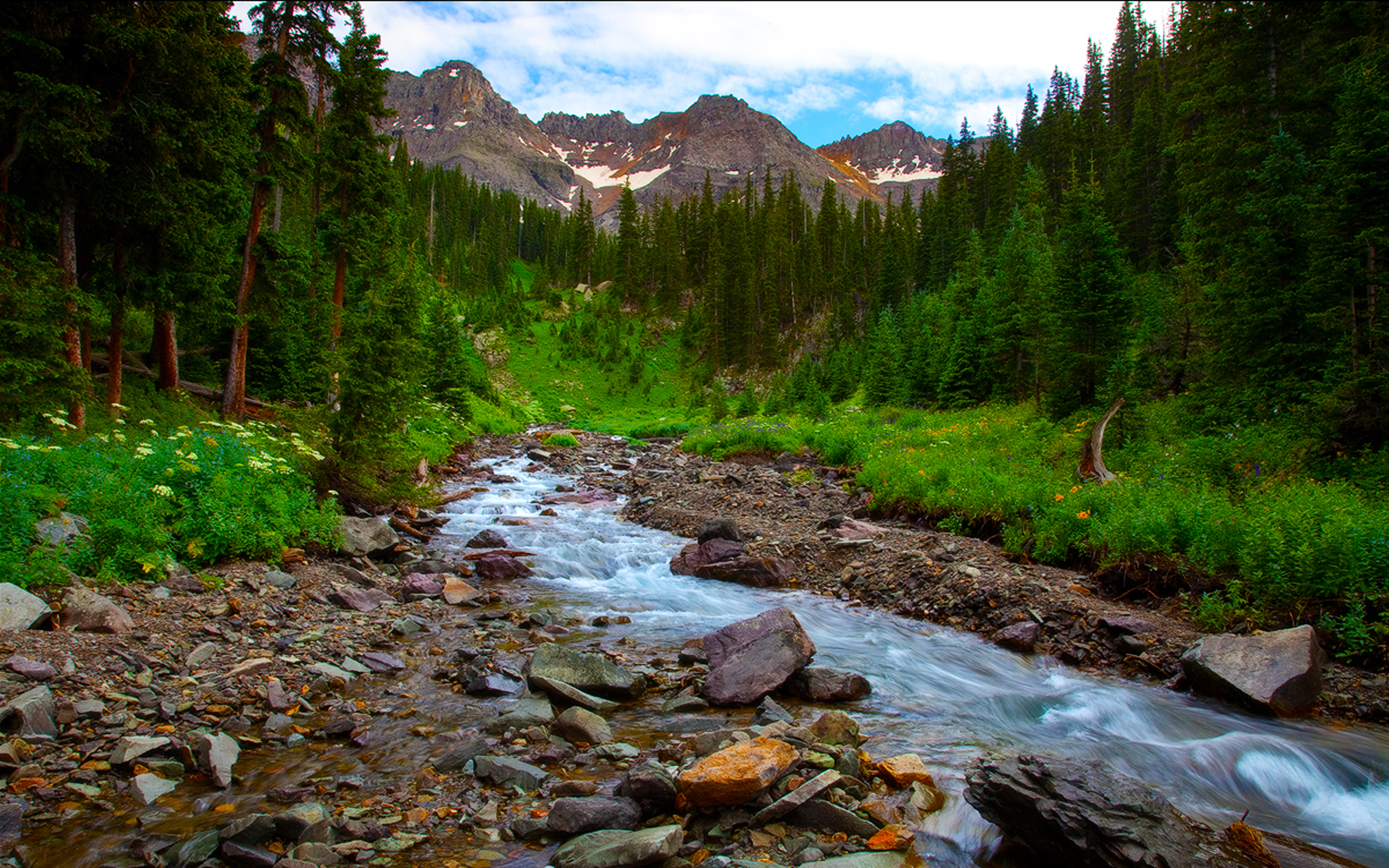 Fall Mountains Hd Wallpaper 13 Spring Landscape River Mountain Flowers Pine Forest Hd