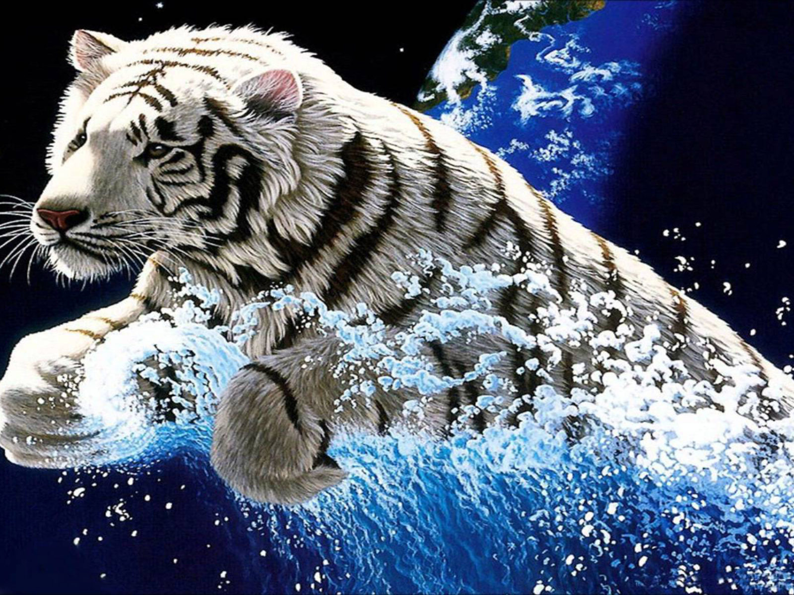 Free Download Cute Wallpapers For Android White Tiger Widescreen 3840x2400 Hd Wallpapers