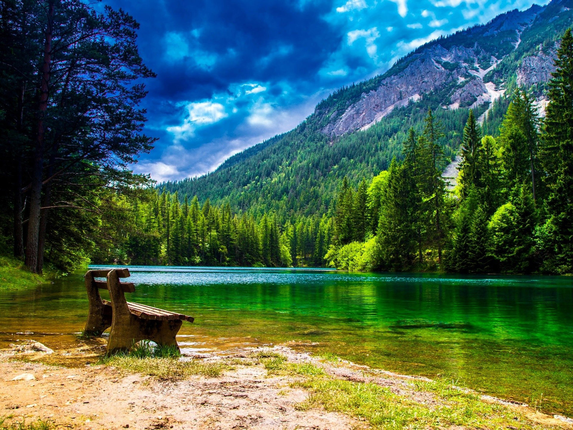 Free Fall Wallpapers Desktop Wonderful Mountain Landscape With Green Pine Forest Green