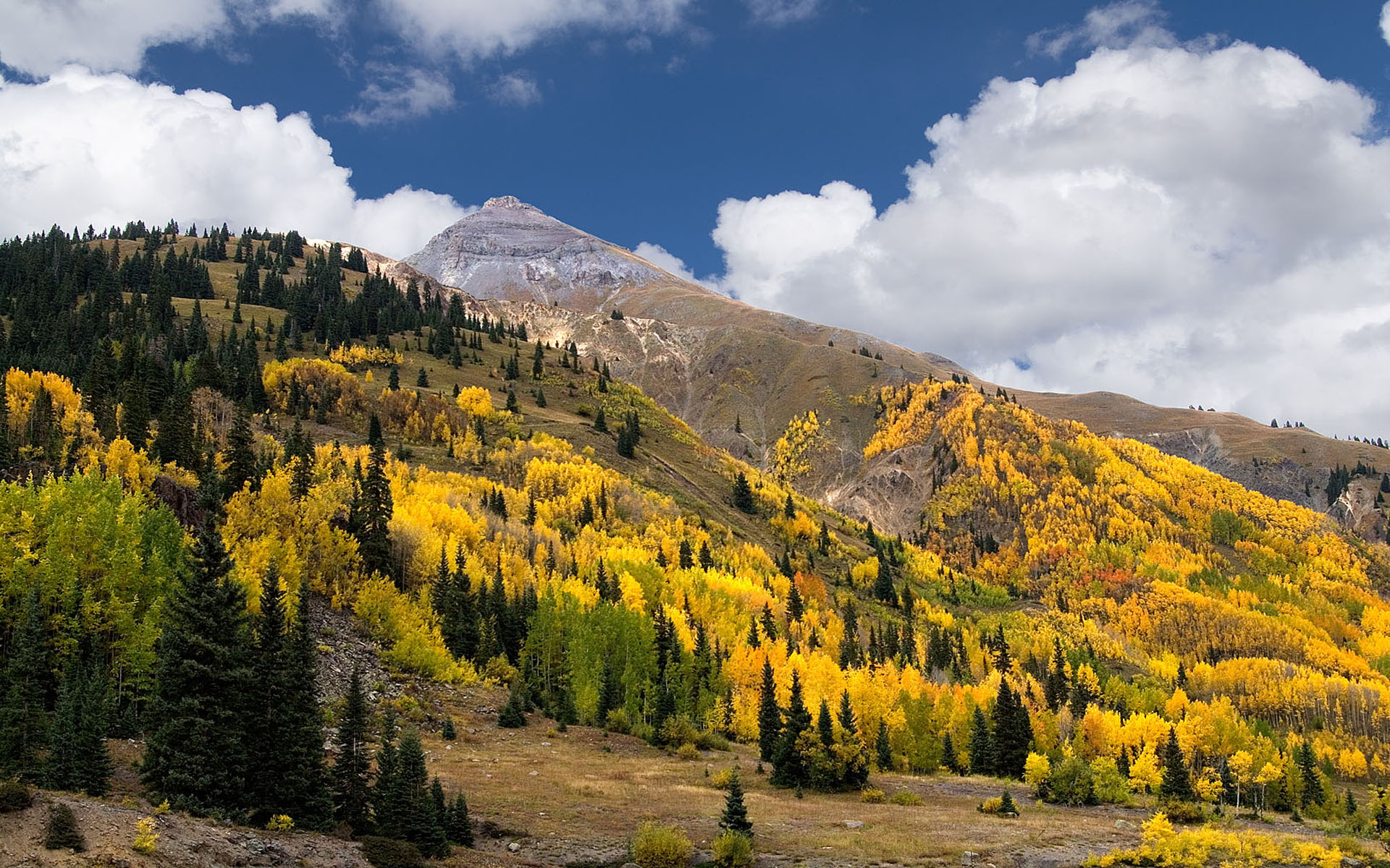 Fall Woodsy Pc Wallpaper Autumn Colors In The Mountains Of San Juan Colorado