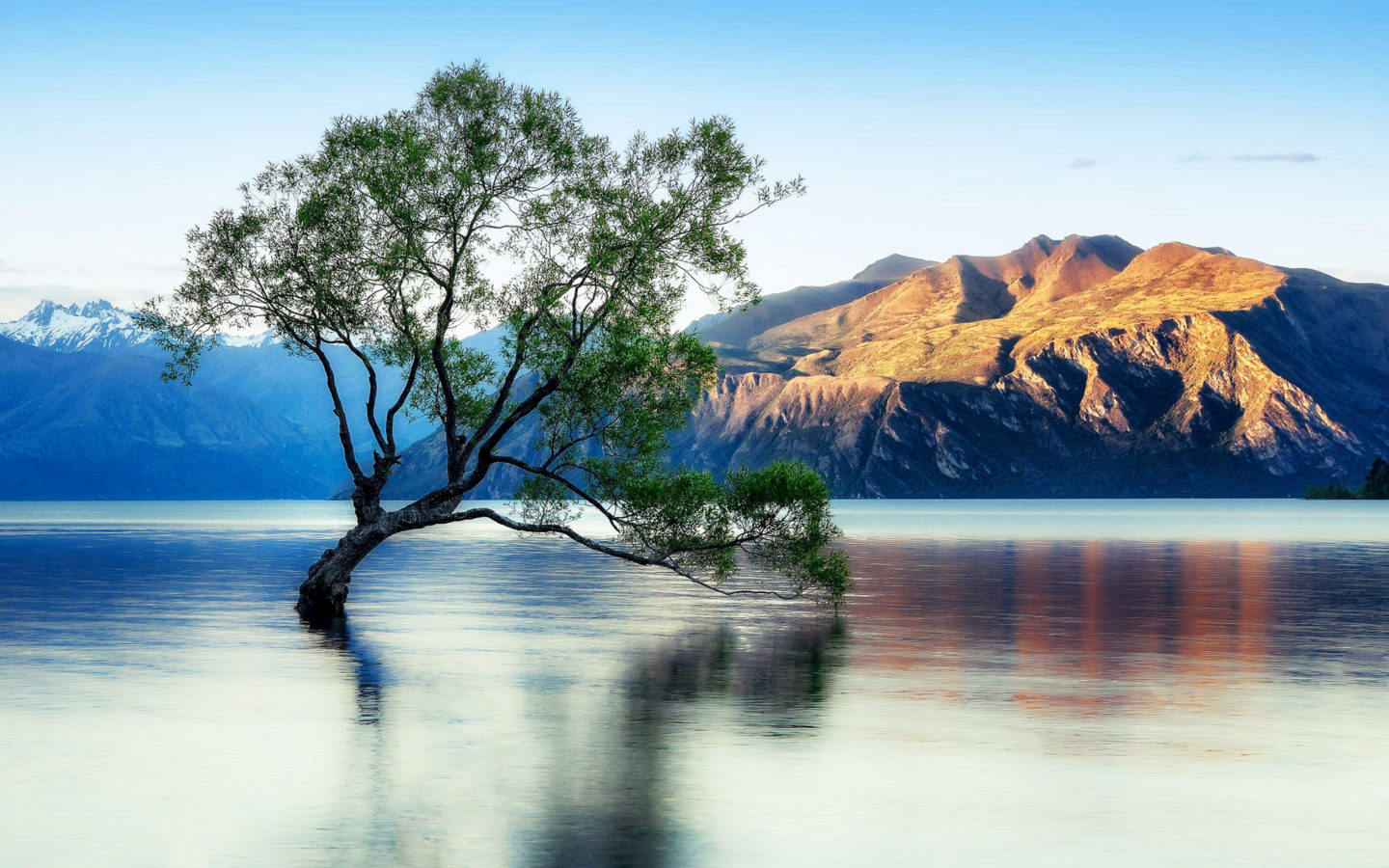 Lake Wanaka Beautiful Reflection New Zealand Wallpaper For
